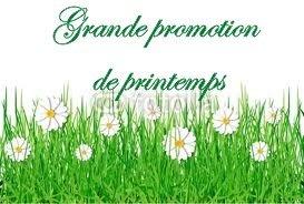 Promotion de printemps… dans Actualités promo